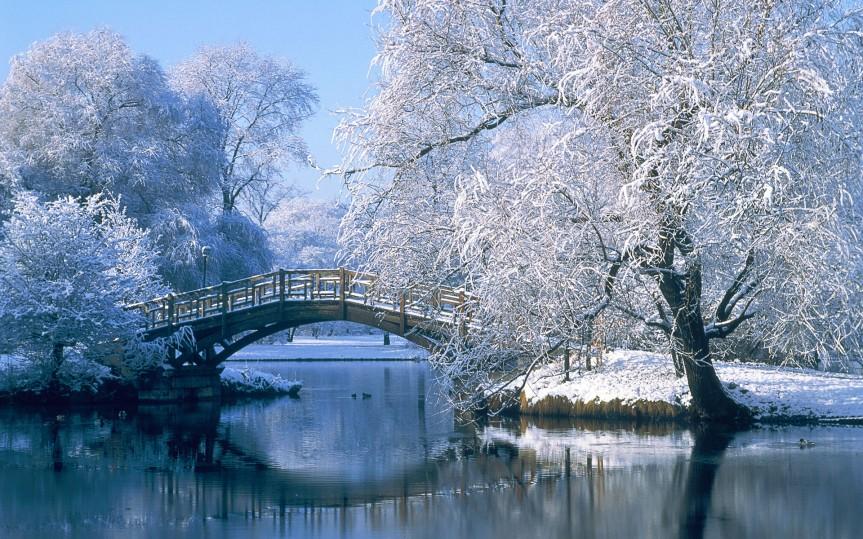 Bridge over a pond in the winter, Johannapark, Leipzig, Germany