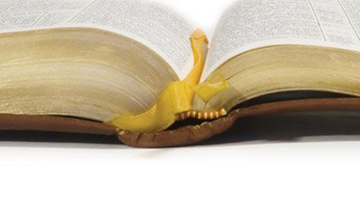 contradictions-in-bible